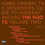 Pochette de l'album pour Home Grown! The Beginner's Guide to Understanding The Roots, Volume 2