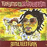 FUNKYMIC and the Saturdays Rism / GOTTA NEED FUNK