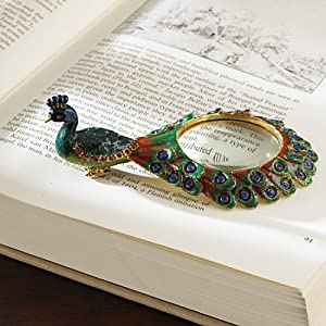 The Bombay Company Store: Peacock Magnifying Glass