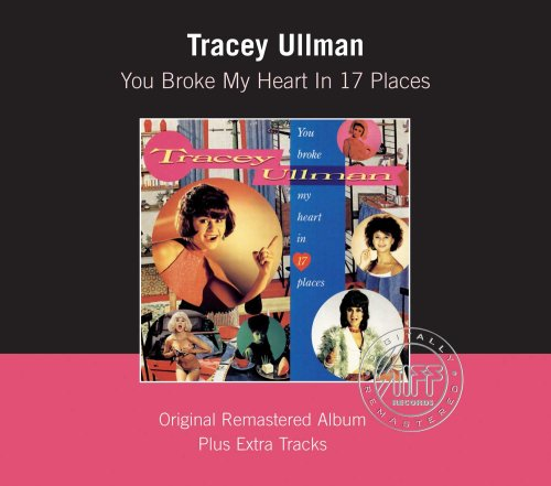 You Broke My Heart in 17 Places