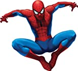 » Streaming Online The Amazing Spider-Man (+ UltraViolet Digital Copy)