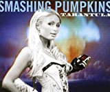 Smashing Punmpkins