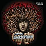 New AmErykah, Pt. One: 4th World War