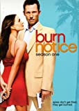 Burn Notice: Friends and Family / Season: 3 / Episode: 1 (2009) (Television Episode)