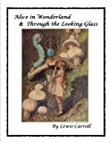 Through the Looking-Glass (1871) (Book) written by Lewis Carroll