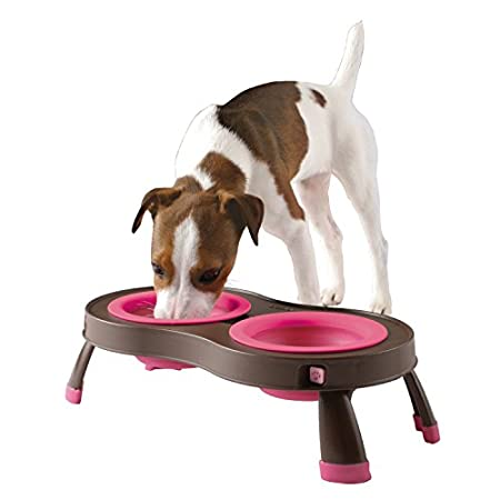 Dexas Collapsible/expandable Pet Feeder – Brown/pink
