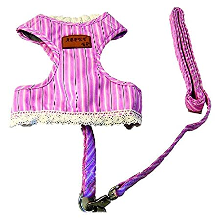 Pink Stripe Dog Cloth With A Leash