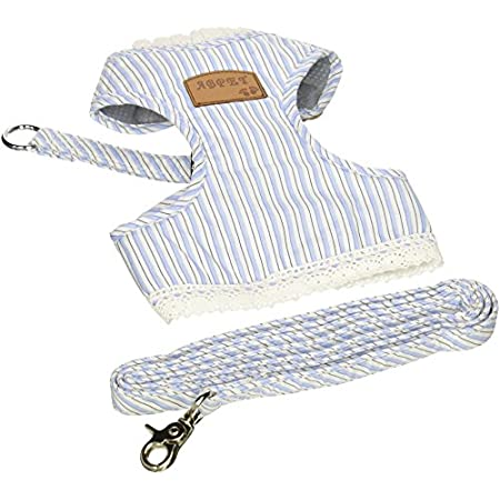 Blue Stripe Dog Cloth With A Leash
