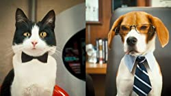 Cats and Dogs2