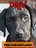 Free Kindle Book : Dogs! Learn About Dogs and Enjoy Colorful Pictures - Look and Learn! (50+ Photos of Dogs)
