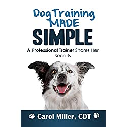 Dog Training: 10 Simple Things Every Well-Behaved Dog Should Know