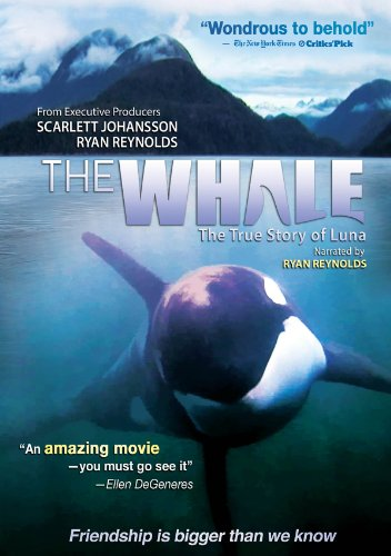 The Whale DVD