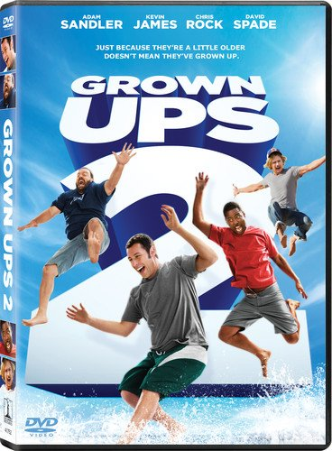Grown Ups 2  DVD
