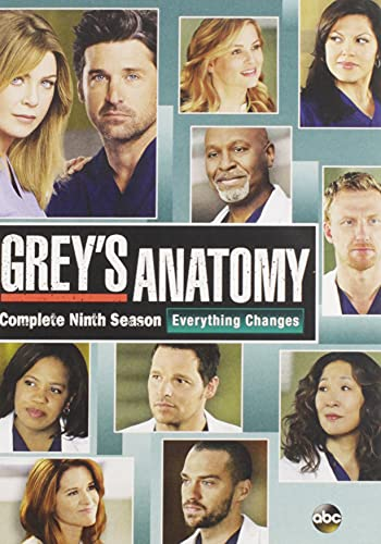 Grey's Anatomy: The Complete Ninth Season DVD