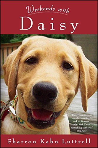 Book Weekends with Daisy