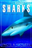 Free Kindle Book : Shark Facts and Cool Pictures. Animal Photo Books for Kids.