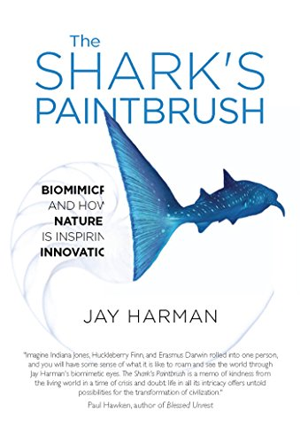 Book The SHarks paintbrush