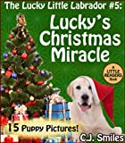 Free Kindle Book : The Lucky Little Labrador: Lucky