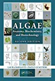 Algae : anatomy, biochemistry, and biotechnology
