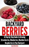 Free Kindle Book : Backyard Berries - A Step by Step Guide to Growing Strawberries, Blueberries, Blackberries & Raspberries in Your Backyard