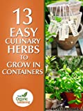 Free Kindle Book : 13 Easy Culinary Herbs To Grow In Containers