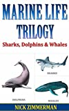 Free Kindle Book : Sharks, Dolphins and Whales: Facts Book For Kids With Amazing Marine Life Pictures (Dad What Are 11)