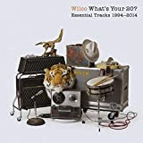 What's Your 20? Essential Tracks