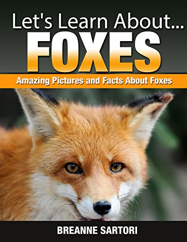 Free Kindle Book : Foxes (Let