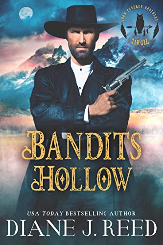 Bandits Hollow by Diane J. Reed