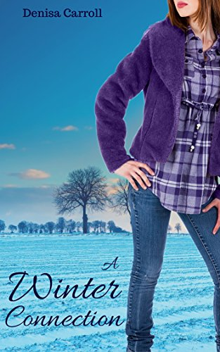 A Winter Connection by Denisa Carroll