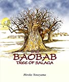 The Baobab Tree of Salaga