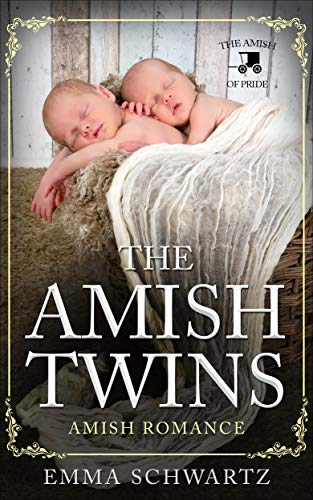 Free eBook - The Amish Twins