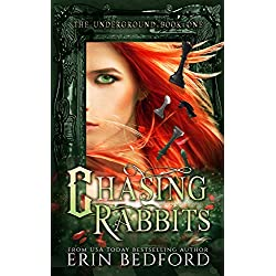 Chasing Rabbits: The Lost Fae Princess (The Underground Book 1)