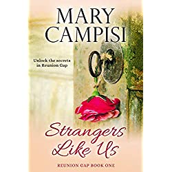 Strangers Like Us: A Small Town Family Saga (Reunion Gap Book 1)