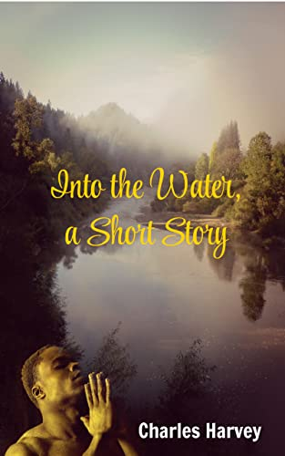 Bargain eBook - Into the Water