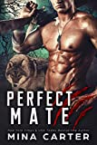 Free eBook - Perfect Mate