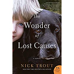 The Wonder of Lost Causes: A Novel