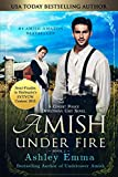Free eBook - Amish Under Fire
