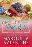Free eBook - Picture Perfect Lie