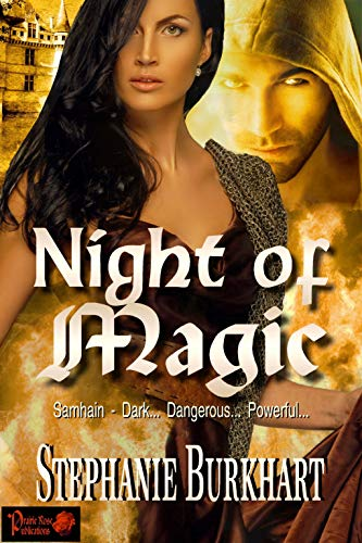 Night of Magic by Stephanie Burkhart. A man is wearing a hoodie in the background next to a stone castle. The woman is wearing a black bustier and a chainmail shawl over one shoulder. Everything looks to be on fire.