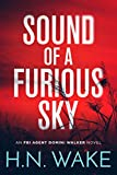 Free eBook - Sound of a Furious Sky