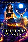 Free eBook - Christmas Magic