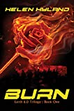 Bargain eBook - Burn  Earth 6 0