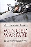 Free eBook - Winged Warfare