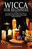 Free eBook - Wicca For Beginners