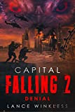 Bargain eBook - Capital Falling   Denial