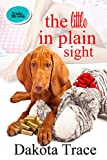 Free eBook - The Little In Plain Sight