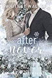 Free eBook - One Day After Never