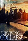 Free eBook - Surviving the Collapse