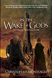 Free eBook - In the Wake of Gods